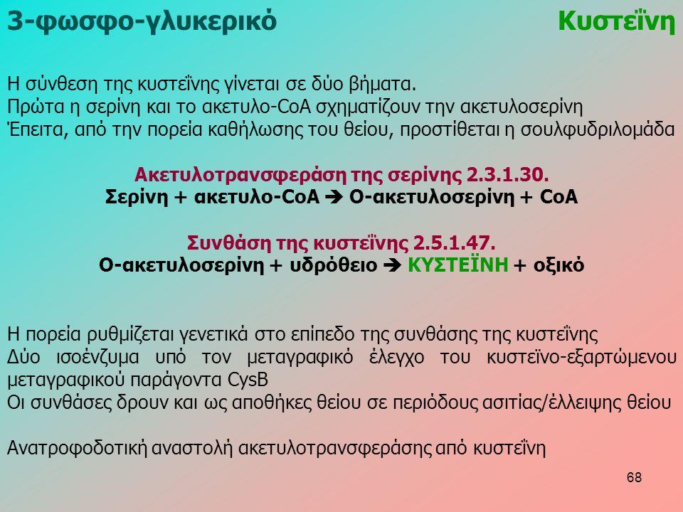 3-φωσφο-γλυκερικόΚυστεΐνη Η σύνθεση της κυστεΐνης γίνεται σε δύο βήματα.