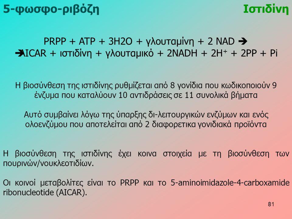 PRPP + ATP + 3H2O + γλουταμίνη + 2 NAD   AICAR + ιστιδίνη + γλουταμικό + 2NADH + 2H + + 2PP + Pi Η βιοσύνθεση της ιστιδίνης ρυθμίζεται από 8 γονίδια που κωδικοποιούν 9 ένζυμα που καταλύουν 10 αντιδράσεις σε 11 συνολικά βήματα Αυτό συμβαίνει λόγω της ύπαρξης δι-λειτουργικών ενζύμων και ενός ολοενζύμου που αποτελείται από 2 διαφορετικα γονιδιακά προϊόντα Η βιοσύνθεση της ιστιδίνης έχει κοινα στοιχεία με τη βιοσύνθεση των πουρινών/νουκλεοτιδίων.