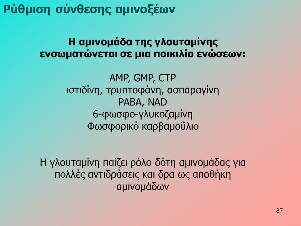 Ρύθμιση σύνθεσης αμινοξέων Η αμινομάδα της γλουταμίνης ενσωματώνεται σε μια ποικιλία ενώσεων: AMP, GMP, CTP ιστιδίνη, τρυπτοφάνη, ασπαραγίνη PABA, NAD 6-φωσφο-γλυκοζαμίνη Φωσφορικό καρβαμοΰλιο Η γλουταμίνη παίζει ρόλο δότη αμινομάδας για πολλές αντιδράσεις και δρα ως αποθήκη αμινομάδων 87
