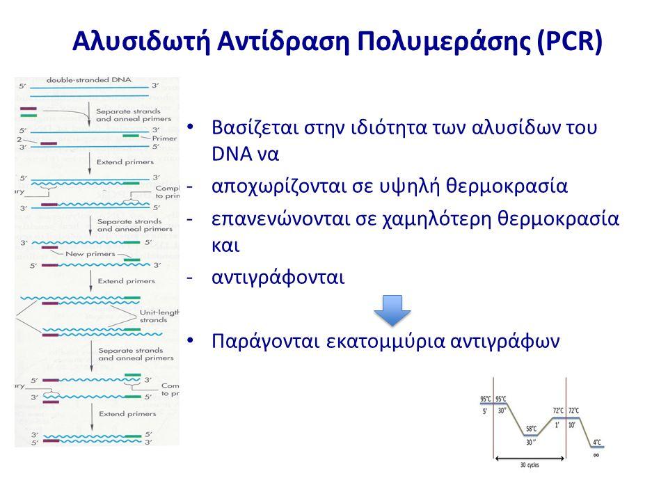 Αλυσιδωτή Αντίδραση Πολυμεράσης (PCR) Βασίζεται στην ιδιότητα των αλυσίδων του DNA να -αποχωρίζονται σε υψηλή θερμοκρασία -επανενώνονται σε χαμηλότερη θερμοκρασία και -αντιγράφονται Παράγονται εκατομμύρια αντιγράφων