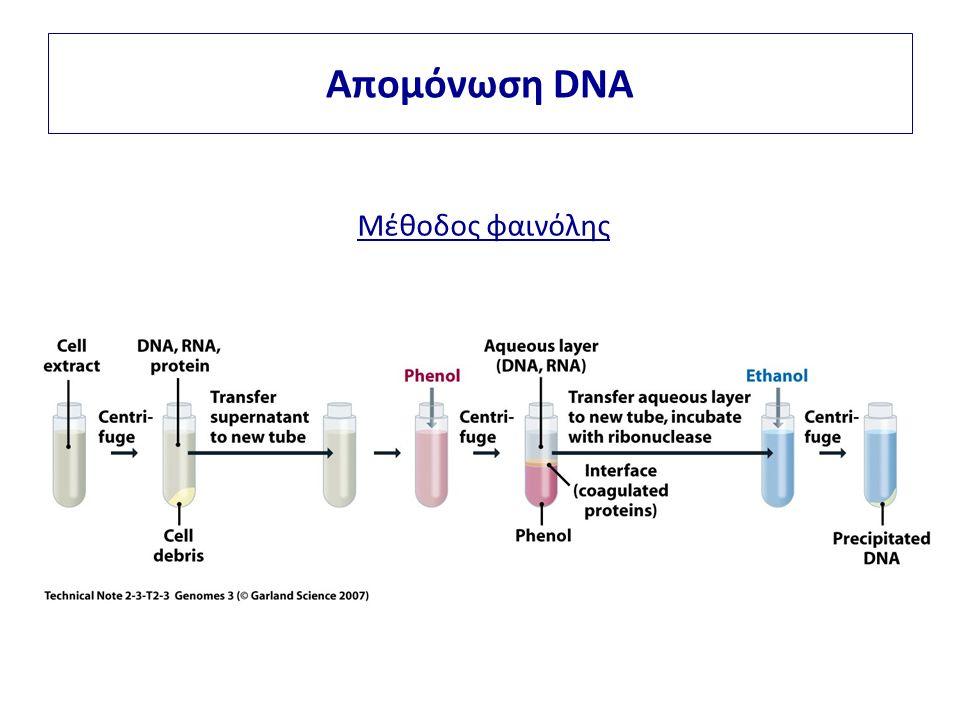 Απομόνωση DNA Μέθοδος φαινόλης