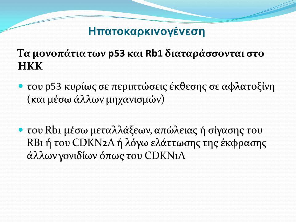 Τα μονοπάτια των p53 και Rb1 διαταράσσονται στο ΗΚΚ του p53 κυρίως σε περιπτώσεις έκθεσης σε αφλατοξίνη (και μέσω άλλων μηχανισμών) του Rb1 μέσω μεταλλάξεων, απώλειας ή σίγασης του RB1 ή του CDKN2A ή λόγω ελάττωσης της έκφρασης άλλων γονιδίων όπως του CDKN1A Ηπατοκαρκινογένεση