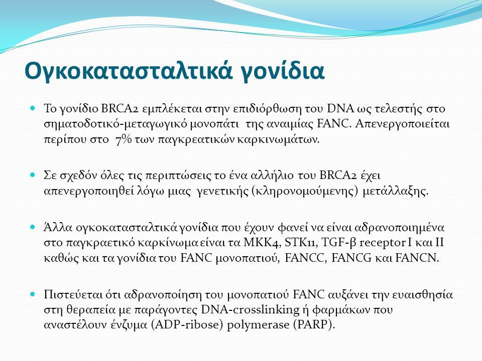 Ογκοκατασταλτικά γονίδια Το γονίδιο BRCA2 εμπλέκεται στην επιδιόρθωση του DNA ως τελεστής στο σηματοδοτικό-μεταγωγικό μονοπάτι της αναιμίας FANC.