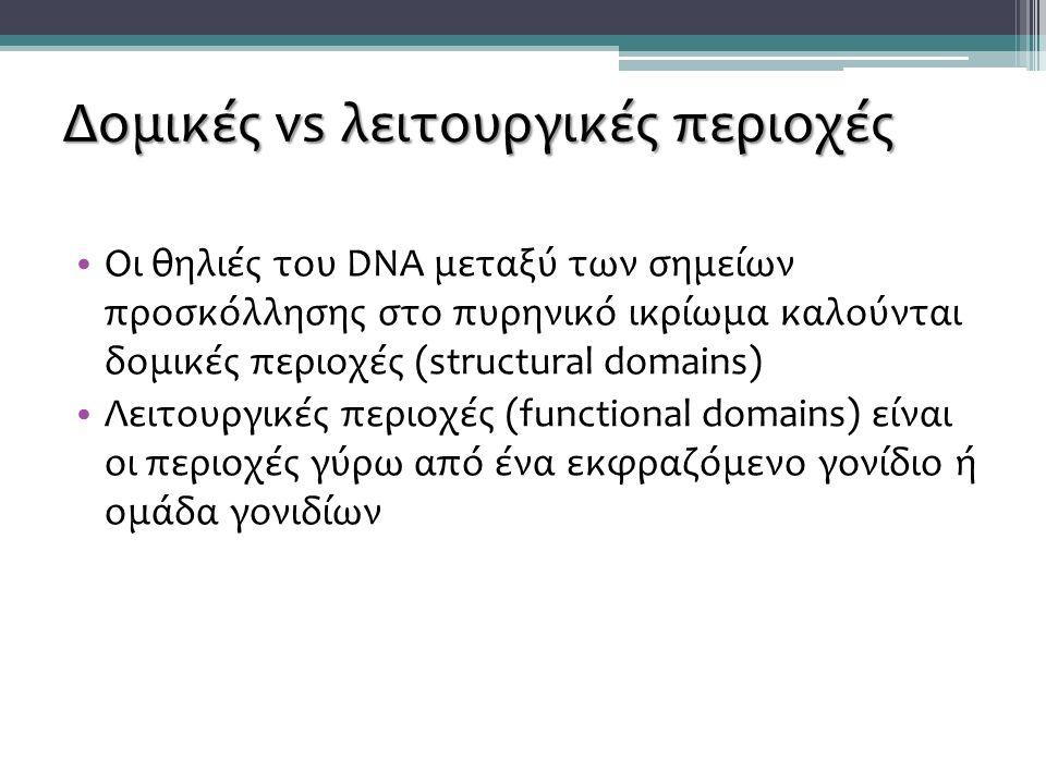 Δομικές vs λειτουργικές περιοχές Οι θηλιές του DNA μεταξύ των σημείων προσκόλλησης στο πυρηνικό ικρίωμα καλούνται δομικές περιοχές (structural domains) Λειτουργικές περιοχές (functional domains) είναι οι περιοχές γύρω από ένα εκφραζόμενο γονίδιο ή ομάδα γονιδίων