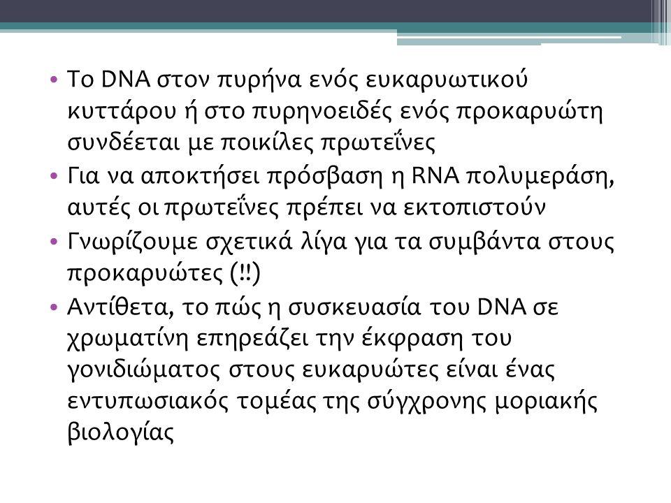 Το DNA στον πυρήνα ενός ευκαρυωτικού κυττάρου ή στο πυρηνοειδές ενός προκαρυώτη συνδέεται με ποικίλες πρωτεΐνες Για να αποκτήσει πρόσβαση η RNA πολυμεράση, αυτές οι πρωτεΐνες πρέπει να εκτοπιστούν Γνωρίζουμε σχετικά λίγα για τα συμβάντα στους προκαρυώτες (!!) Αντίθετα, το πώς η συσκευασία του DNA σε χρωματίνη επηρεάζει την έκφραση του γονιδιώματος στους ευκαρυώτες είναι ένας εντυπωσιακός τομέας της σύγχρονης μοριακής βιολογίας