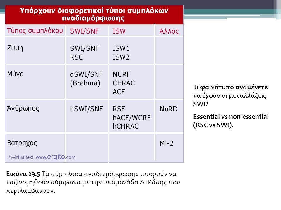 Εικόνα 23.5 Τα σύμπλοκα αναδιαμόρφωσης μπορούν να ταξινομηθούν σύμφωνα με την υπομονάδα ATPάσης που περιλαμβάνουν.