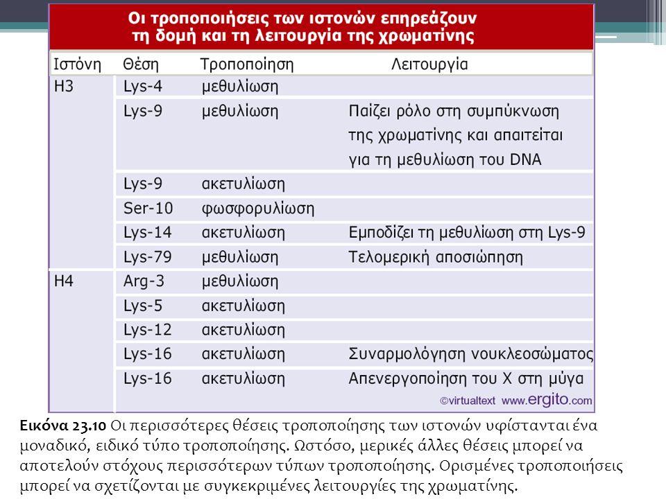 Εικόνα 23.10 Οι περισσότερες θέσεις τροποποίησης των ιστονών υφίστανται ένα μοναδικό, ειδικό τύπο τροποποίησης.