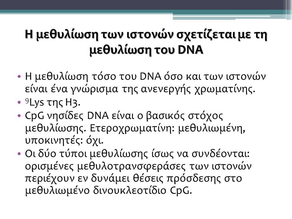 Η μεθυλίωση των ιστονών σχετίζεται με τη μεθυλίωση του DNA H μεθυλίωση τόσο του DNA όσο και των ιστονών είναι ένα γνώρισμα της ανενεργής χρωματίνης.