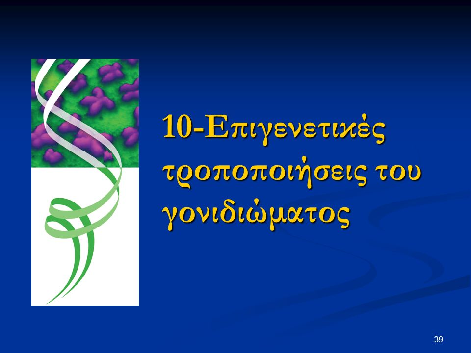 39 10-Επιγενετικές τροποποιήσεις του γονιδιώματος