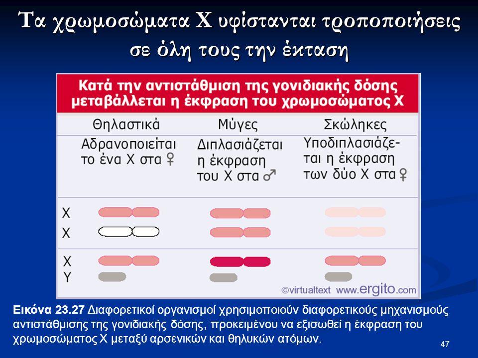 47 Εικόνα 23.27 Διαφορετικοί οργανισμοί χρησιμοποιούν διαφορετικούς μηχανισμούς αντιστάθμισης της γονιδιακής δόσης, προκειμένου να εξισωθεί η έκφραση του χρωμοσώματος X μεταξύ αρσενικών και θηλυκών ατόμων.