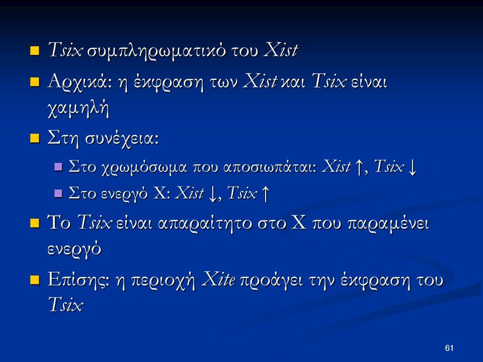 Tsix συμπληρωματικό του Xist Tsix συμπληρωματικό του Xist Αρχικά: η έκφραση των Xist και Tsix είναι χαμηλή Αρχικά: η έκφραση των Xist και Tsix είναι χαμηλή Στη συνέχεια: Στη συνέχεια: Στο χρωμόσωμα που αποσιωπάται: Xist ↑, Tsix ↓ Στο χρωμόσωμα που αποσιωπάται: Xist ↑, Tsix ↓ Στο ενεργό Χ: Xist ↓, Tsix ↑ Στο ενεργό Χ: Xist ↓, Tsix ↑ Το Tsix είναι απαραίτητο στο Χ που παραμένει ενεργό Το Tsix είναι απαραίτητο στο Χ που παραμένει ενεργό Επίσης: η περιοχή Xite προάγει την έκφραση του Tsix Επίσης: η περιοχή Xite προάγει την έκφραση του Tsix 61