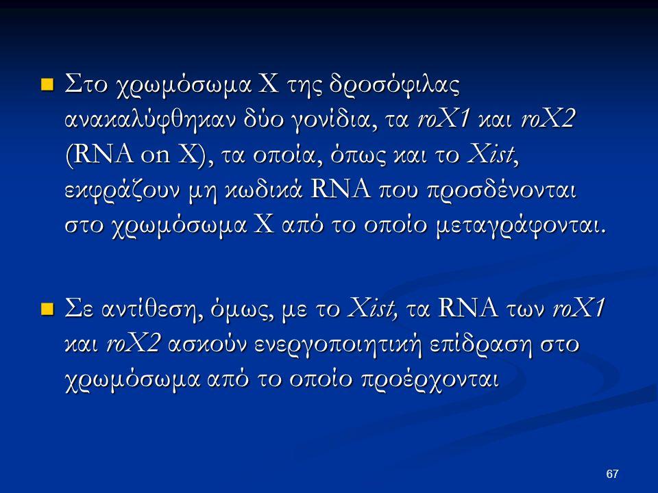 Στο χρωμόσωμα Χ της δροσόφιλας ανακαλύφθηκαν δύο γονίδια, τα roX1 και roX2 (RNA on X), τα οποία, όπως και το Xist, εκφράζουν μη κωδικά RNA που προσδένονται στο χρωμόσωμα Χ από το οποίο μεταγράφονται.