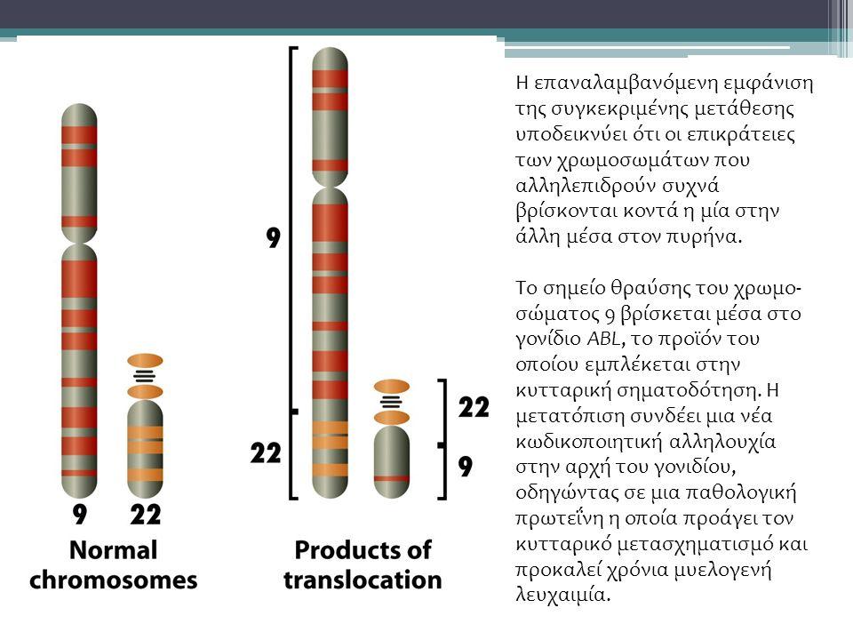 Η επαναλαμβανόμενη εμφάνιση της συγκεκριμένης μετάθεσης υποδεικνύει ότι οι επικράτειες των χρωμοσωμάτων που αλληλεπιδρούν συχνά βρίσκονται κοντά η μία στην άλλη μέσα στον πυρήνα.