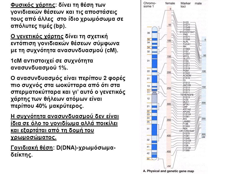 Γενετικός ανασυνδυασμός Alberts ( Γενετικός ανασυνδυασμός, ομόλογος ανασυνδυασμός- Holliday, ανασυνδυασμός σε ειδική θέση, γονίδιο β-σφαιρίνης, διπλασιασμός).