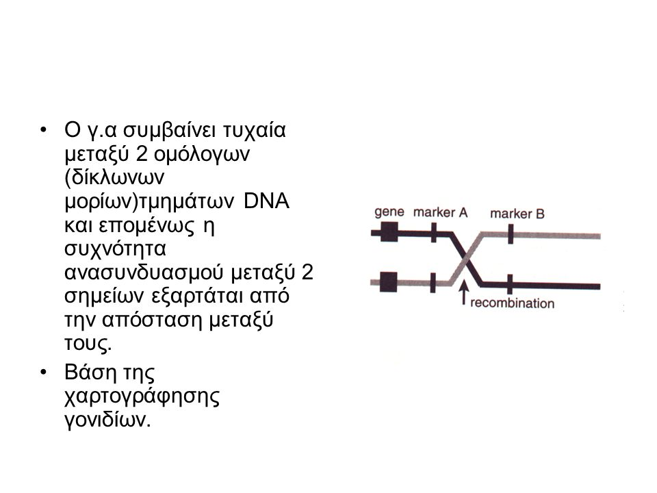 Ανάλυση σύνδεσης Γενετική σύνδεση είναι η τάση αλληλομόρφων δύο ή περισσότερων γονιδίων να συγκληρονομούνται εξ αιτίας της θέσης τους πάνω σε ένα χρωμόσωμα και αυτό εξαρτάται από την απόσταση μεταξύ των γενετικών τόπων τους (loci).