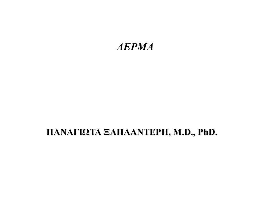 ΠΑΝΑΓΙΩΤΑ ΞΑΠΛΑΝΤΕΡΗ, M.D., PhD. ΔΕΡΜΑ