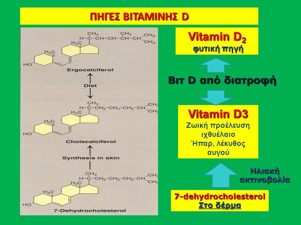 Vitamin D 2 φυτική πηγή φυτική πηγή Vitamin D3 Ζωική προέλευση ιχθυέλαιο Ήπαρ, λέκυθος αυγού 7-dehydrocholesterol Στο δέρμα Βιτ D από διατροφή ΠΗΓΕΣ ΒΙΤΑΜΙΝΗΣ D Ηλιακή ακτινοβολία