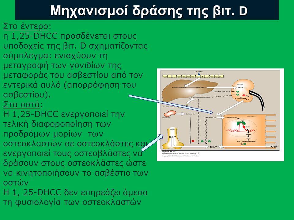 Μηχανισμοί δράσης της βιτ.D Μηχανισμοί δράσης της βιτ.