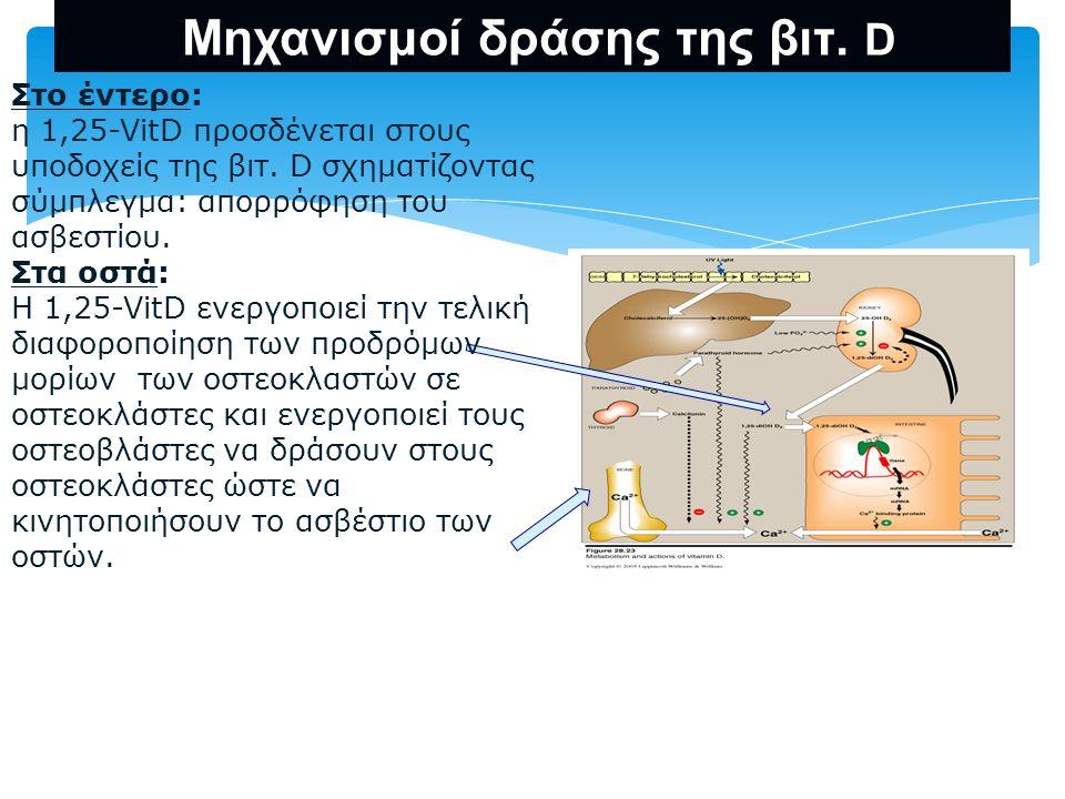 Μηχανισμοί δράσης της βιτ. D Στο έντερο: η 1,25-VitD προσδένεται στους υποδοχείς της βιτ. D σχηματίζοντας σύμπλεγμα: απορρόφηση του ασβεστίου. Στα οστ