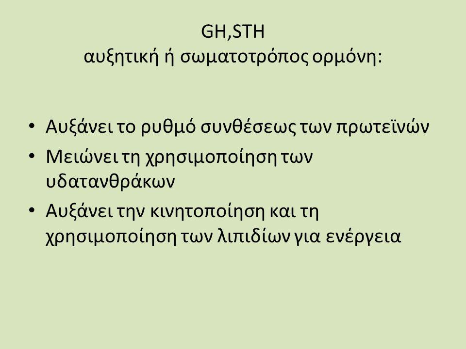 GH,STH αυξητική ή σωματοτρόπος ορμόνη: Αυξάνει το ρυθμό συνθέσεως των πρωτεϊνών Μειώνει τη χρησιμοποίηση των υδατανθράκων Αυξάνει την κινητοποίηση και τη χρησιμοποίηση των λιπιδίων για ενέργεια