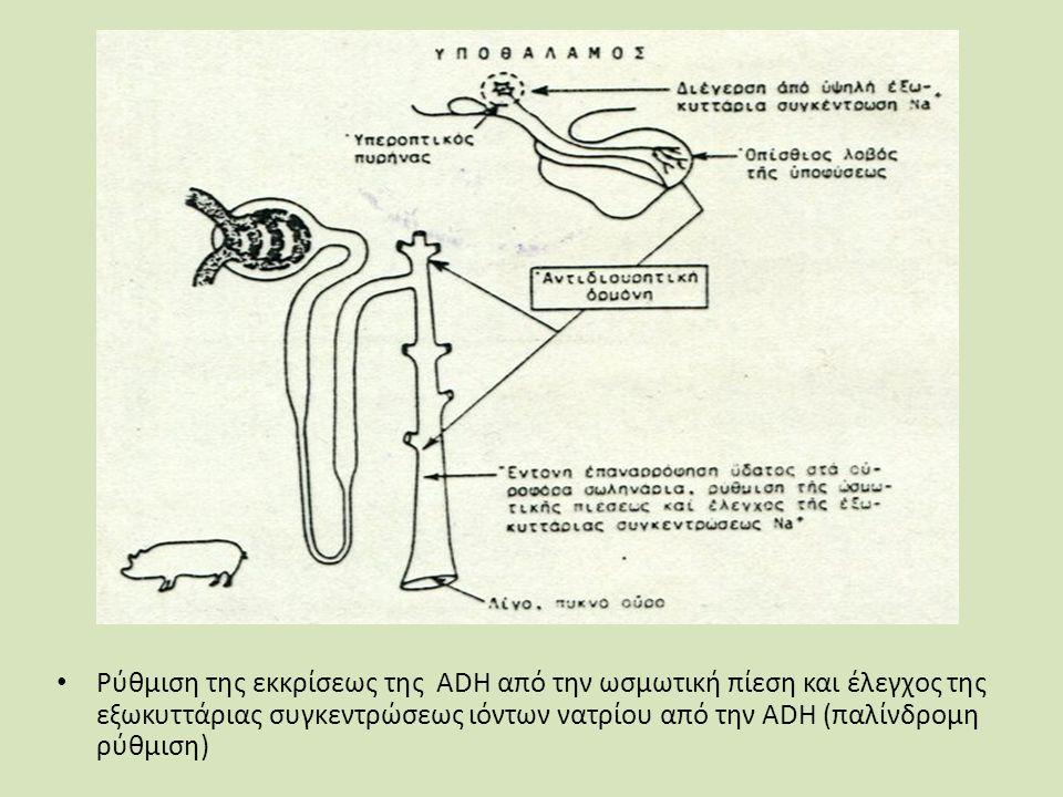 Ρύθμιση της εκκρίσεως της ADH από την ωσμωτική πίεση και έλεγχος της εξωκυττάριας συγκεντρώσεως ιόντων νατρίου από την ADH (παλίνδρομη ρύθμιση)