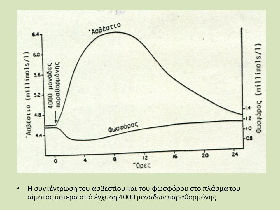 Η συγκέντρωση του ασβεστίου και του φωσφόρου στο πλάσμα του αίματος ύστερα από έγχυση 4000 μονάδων παραθορμόνης