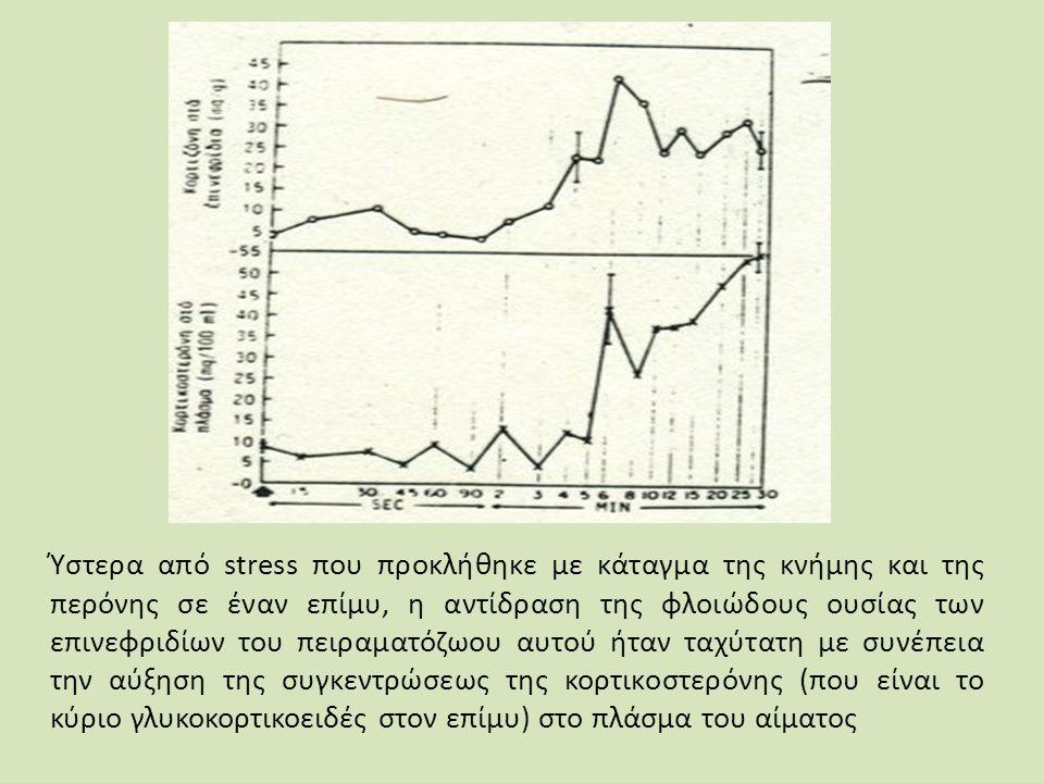 Ύστερα από stress που προκλήθηκε με κάταγμα της κνήμης και της περόνης σε έναν επίμυ, η αντίδραση της φλοιώδους ουσίας των επινεφριδίων του πειραματόζωου αυτού ήταν ταχύτατη με συνέπεια την αύξηση της συγκεντρώσεως της κορτικοστερόνης (που είναι το κύριο γλυκοκορτικοειδές στον επίμυ) στο πλάσμα του αίματος