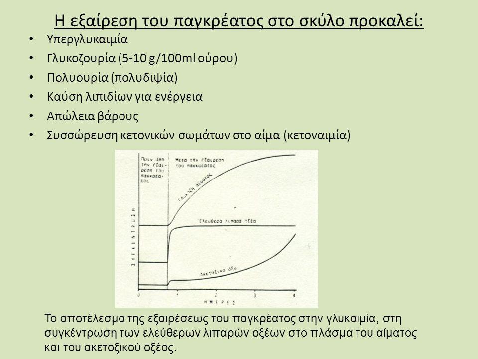Η εξαίρεση του παγκρέατος στο σκύλο προκαλεί: Υπεργλυκαιμία Γλυκοζουρία (5-10 g/100ml ούρου) Πολυουρία (πολυδιψία) Καύση λιπιδίων για ενέργεια Απώλεια βάρους Συσσώρευση κετονικών σωμάτων στο αίμα (κετοναιμία) Το αποτέλεσμα της εξαιρέσεως του παγκρέατος στην γλυκαιμία, στη συγκέντρωση των ελεύθερων λιπαρών οξέων στο πλάσμα του αίματος και του ακετοξικού οξέος.
