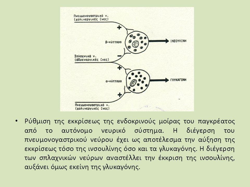 Ρύθμιση της εκκρίσεως της ενδοκρινούς μοίρας του παγκρέατος από το αυτόνομο νευρικό σύστημα.