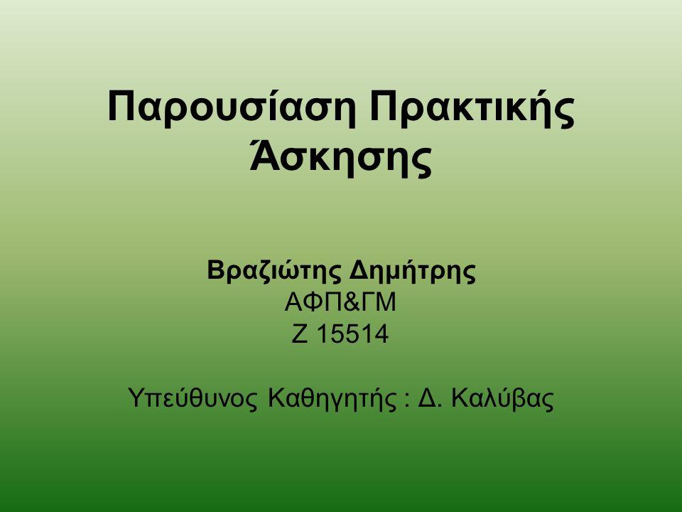 Παρουσίαση Πρακτικής Άσκησης Βραζιώτης Δημήτρης ΑΦΠ&ΓΜ Ζ 15514 Υπεύθυνος Καθηγητής : Δ. Καλύβας