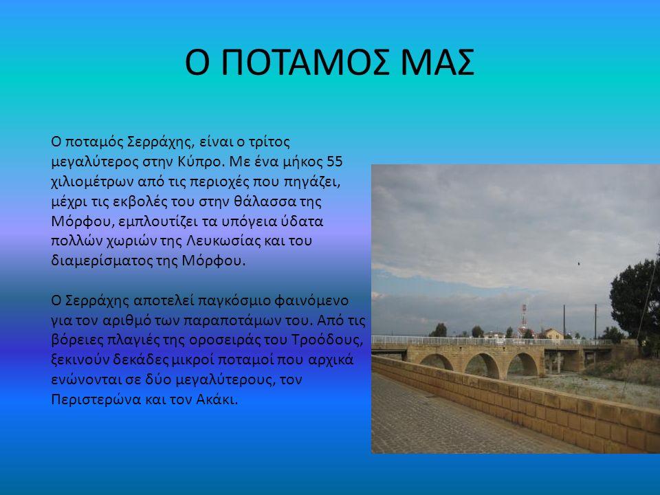 Ο ΠΟΤΑΜΟΣ ΜΑΣ Ο ποταμός Σερράχης, είναι ο τρίτος μεγαλύτερος στην Κύπρο. Με ένα μήκος 55 χιλιομέτρων από τις περιοχές που πηγάζει, μέχρι τις εκβολές τ