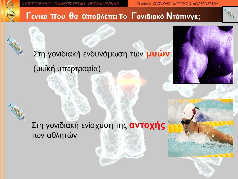 ΑΡΙΣΤΟΤΕΛΕΙΟ ΠΑΝΕΠΙΣΤΗΜΙΟ ΘΕΣΣΑΛΟΝΙΚΗΣΤΜΗΜΑ ΦΥΣΙΚΗΣ ΑΓΩΓΗΣ & ΑΘΛΗΤΙΣΜΟΥ Στη γονιδιακή ενδυνάμωση των μυών (μυϊκή υπερτροφία) Γ ενικά π ου θ α α ποβλέπει τ ο Γ ονιδιακό Ν τόπινγκ ; Στη γονιδιακή ενίσχυση της αντοχής των αθλητών