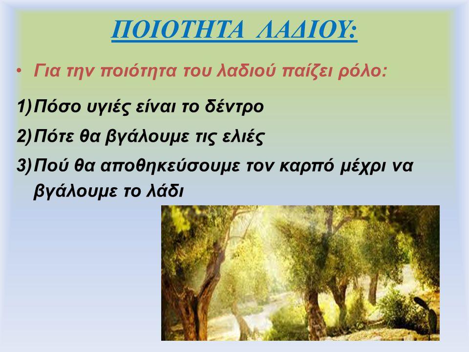 ΠΟΙΟΤΗΤΑ ΛΑΔΙΟΥ: Για την ποιότητα του λαδιού παίζει ρόλο: 1)Πόσο υγιές είναι το δέντρο 2)Πότε θα βγάλουμε τις ελιές 3)Πού θα αποθηκεύσουμε τον καρπό μέχρι να βγάλουμε το λάδι