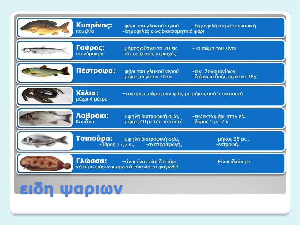 ειδη ψαριων Κυπρίνος: -ψάρι του γλυκού νερού-δημοφιλή στην Ευρωπαική κουζίνα-δημοφιλές κ ως διακοσμητικό ψάρι Γαύρος: -μήκος φθάνει τα 20 εκ-Το σώμα του είναι στενόμακρο-Ζει σε ζεστές περιοχές Πέστροφα: -ψάρι του γλυκού νερού-οικ.
