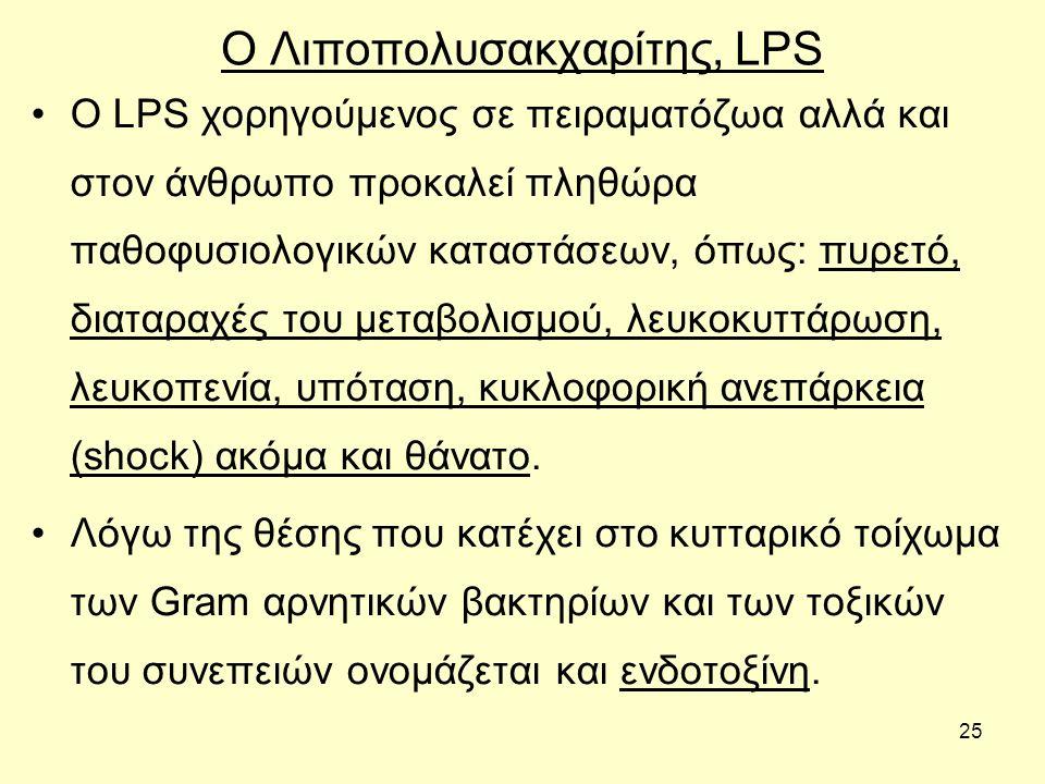 25 Ο Λιποπολυσακχαρίτης, LPS Ο LPS χορηγούμενος σε πειραματόζωα αλλά και στον άνθρωπο προκαλεί πληθώρα παθοφυσιολογικών καταστάσεων, όπως: πυρετό, δια