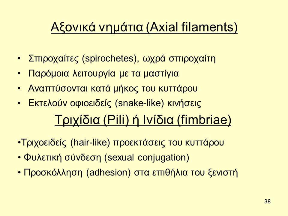 38 Αξονικά νημάτια (Axial filaments) Σπιροχαίτες (spirochetes), ωχρά σπιροχαίτη Παρόμοια λειτουργία με τα μαστίγια Αναπτύσονται κατά μήκος του κυττάρο