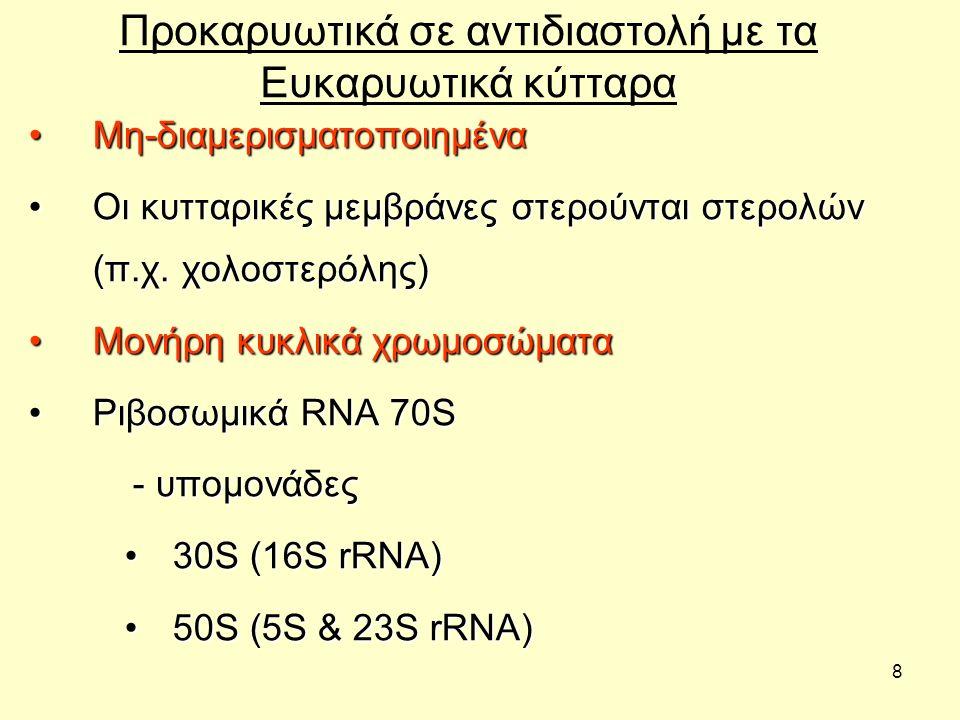 39 Ο σχηματισμός μορφών χωρίς τοίχωμα (Wall-less ) Προκύπτουν από τη δράση: –ενζύμων που διαλύουν το κυτταρικό τοίχωμα –αντιβιοτικών που αναστέλλουν τη βιοσύνθεση πεπτιδογλυκάνης (peptidoglycan biosynthesis) Συνήθως μη-βιώσιμες μορφές (non-viable) Μη διπλασιαζόμενα βακτήρια χωρίς τοίχωμα: –σφαιροπλάστες (spheroplasts) με εξωτερική μεμβράνη –πρωτοπλάστες (protoplasts) χωρίς εξωτερική μεμβράνη Διπλασιαζόμενα βακτήρια χωρίς τοίχωμα: –L μορφές (στελέχη που στερούνται τοιχώματος) –Γένος (Genus) βακτηρίων χωρίς τοίχωμα: Mycoplasma