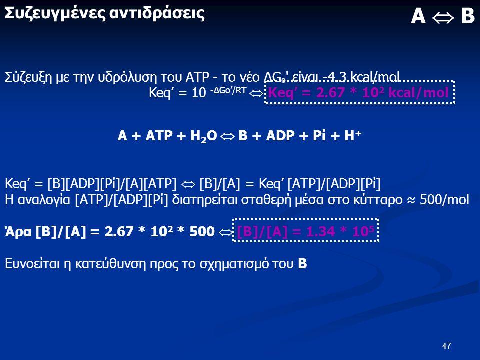47 Συζευγμένες αντιδράσεις Σύζευξη με την υδρόλυση του ΑΤΡ - το νέο ΔG º είναι -4.3 kcal/mol Keq' = 10 -ΔGo'/RT  Keq' = 2.67 * 10 2 kcal/mol Α + ΑΤΡ + Η 2 Ο  Β + ΑDΡ + Ρί + Η + Keq' = [Β][ΑDΡ][Ρί]/[Α][ΑΤΡ]  [Β]/[Α] = Keq' [ΑΤΡ]/[ΑDΡ][Ρί] Η αναλογία [ΑΤΡ]/[ΑDΡ][Ρί] διατηρείται σταθερή μέσα στο κύτταρο ≈ 500/mol Άρα [Β]/[Α] = 2.67 * 10 2 * 500  [Β]/[Α] = 1.34 * 10 5 Ευνοείται η κατεύθυνση προς το σχηματισμό του Β Α  Β