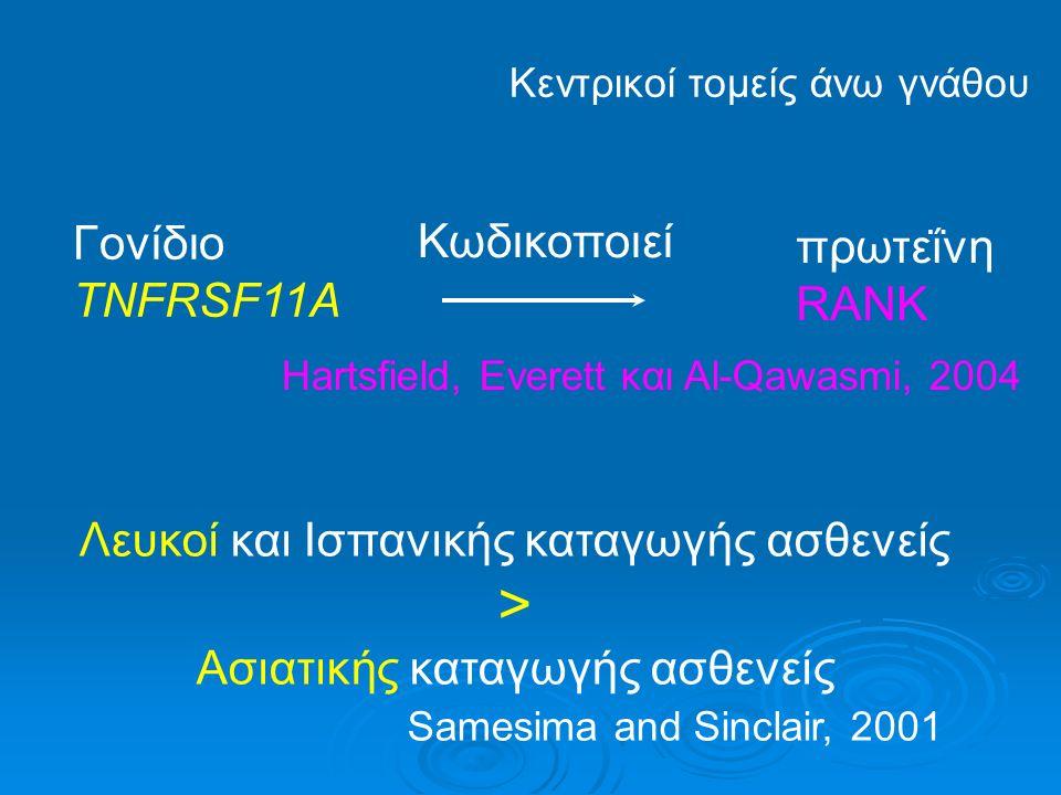 ΑΤΟΜΙΚΗ ΠΡΟΔΙΑΘΕΣΗ Massler και Malone 1954, Rygh 1977, Linge 1994 ΓΕΝΕΤΙΚΟΣ ΠΑΡΑΓΟΝΤΑΣ 50-60% ριζικής απορρόφησης τομέων άνω (Ηarris et al., 1997; Hartsfield et al., 2004) Γονίδιο IL-1β15% ριζικής απορρόφησης Ομόζυγοι «1» 5.6 φ.