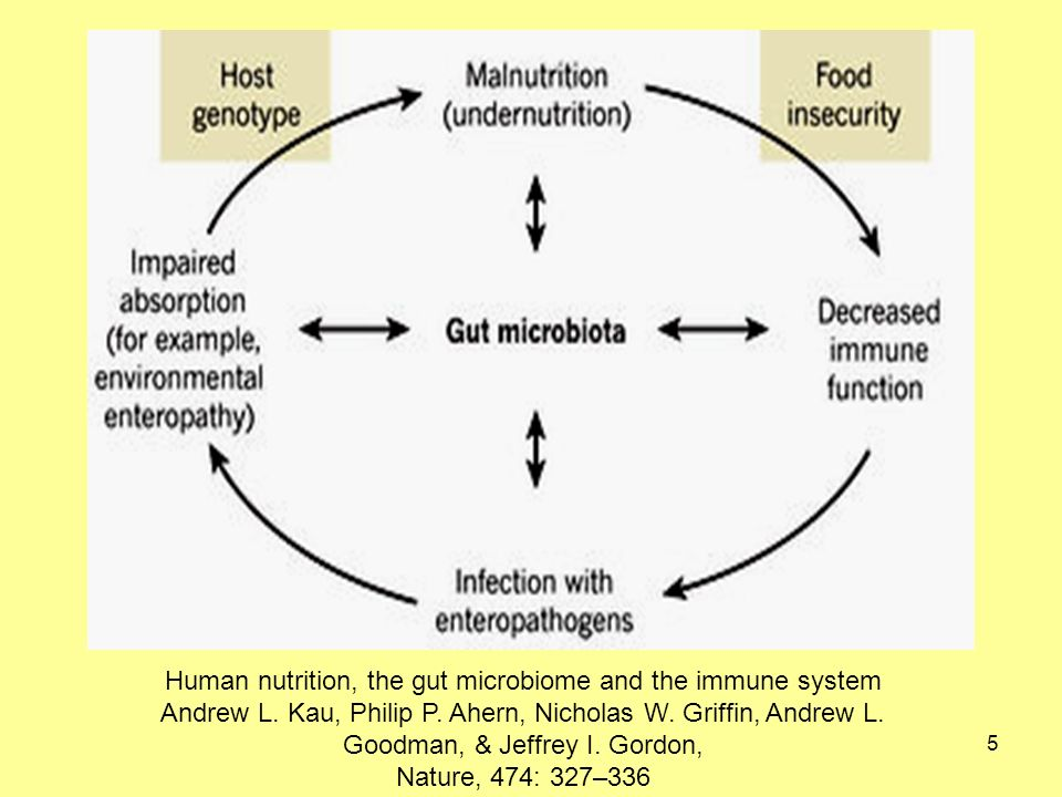 5 Human nutrition, the gut microbiome and the immune system Andrew L.