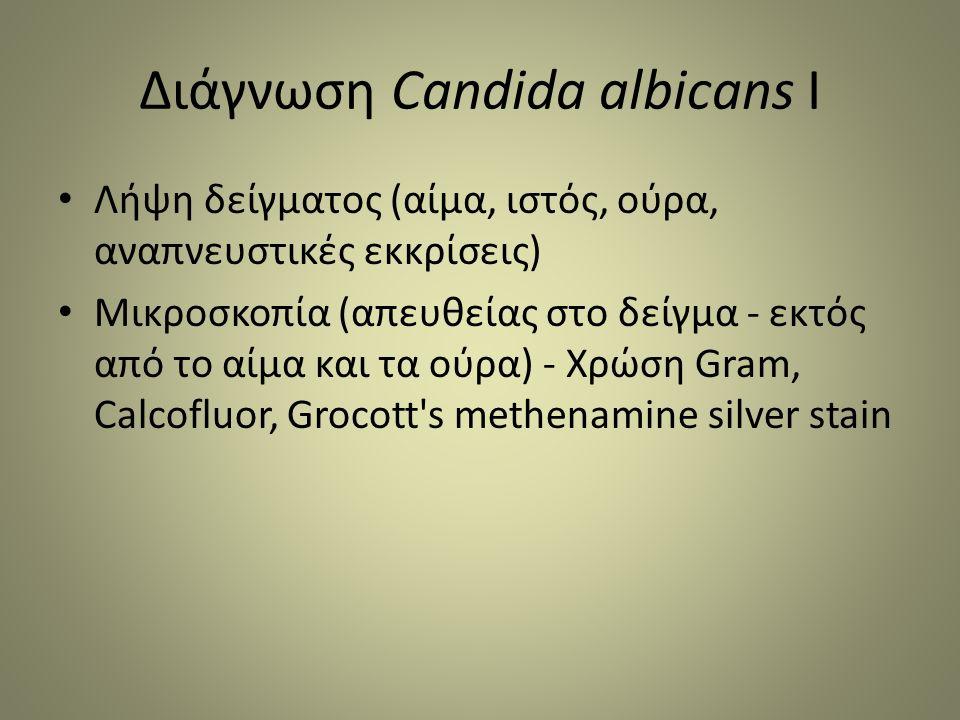 Διάγνωση Candida albicans I Λήψη δείγματος (αίμα, ιστός, ούρα, αναπνευστικές εκκρίσεις) Μικροσκοπία (απευθείας στο δείγμα - εκτός από το αίμα και τα ούρα) - Χρώση Gram, Calcofluor, Grocott s methenamine silver stain