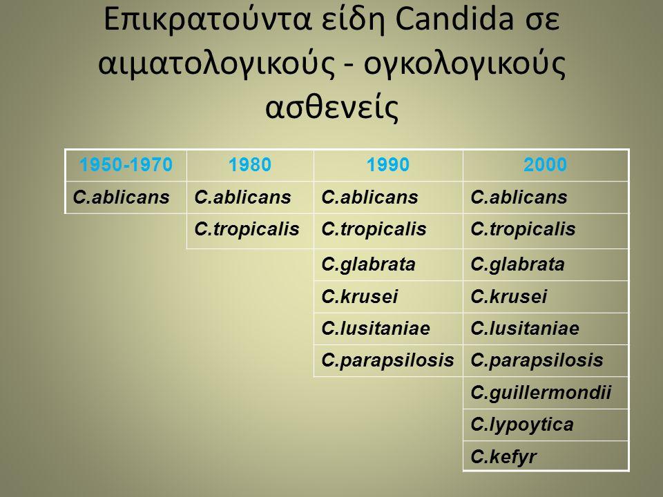 Επικρατούντα είδη Candida σε αιματολογικούς - ογκολογικούς ασθενείς 1950-1970198019902000 C.ablicans C.tropicalis C.glabrata C.krusei C.lusitaniae C.parapsilosis C.guillermondii C.lypoytica C.kefyr