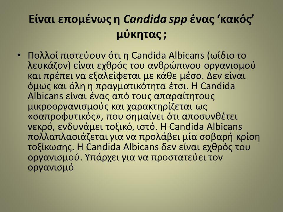 Είναι επομένως η Candida spp ένας 'κακός' μύκητας ; Πολλοί πιστεύουν ότι η Candida Albicans (ωίδιο το λευκάζον) είναι εχθρός του ανθρώπινου οργανισμού και πρέπει να εξαλείφεται με κάθε μέσο.