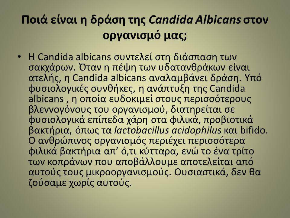 Ποιά είναι η δράση της Candida Albicans στον οργανισμό μας; Η Candida albicans συντελεί στη διάσπαση των σακχάρων.