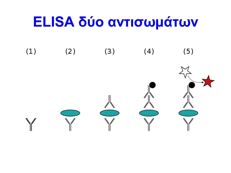 ELISA δύο αντισωμάτων