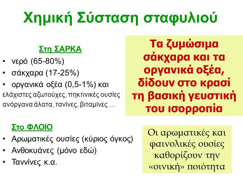 Τα ζυμώσιμα σάκχαρα και τα οργανικά οξέα, δίδουν στο κρασί τη βασική γευστική του ισορροπία Χημική Σύσταση σταφυλιού Στη ΣΑΡΚΑ νερό (65-80%) σάκχαρα (17-25%) οργανικά οξέα (0,5-1%) και ελάχιστες αζωτούχες, πηκτινικές ουσίες ανόργανα άλατα, τανίνες, βιταμίνες … Στο ΦΛΟΙΟ Αρωματικές ουσίες (κύριος όγκος) Ανθοκυάνες (μόνο εδώ) Ταννίνες κ.α.