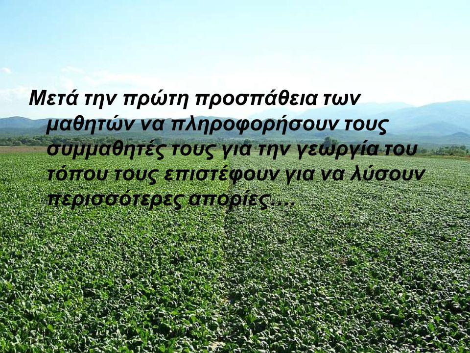 Μετά την πρώτη προσπάθεια των μαθητών να πληροφορήσουν τους συμμαθητές τους για την γεωργία του τόπου τους επιστέφουν για να λύσουν περισσότερες απορίες….