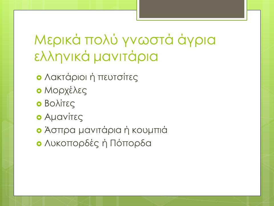 Μερικά πολύ γνωστά άγρια ελληνικά μανιτάρια  Λακτάριοι ή πευτσίτες  Μορχέλες  Βολίτες  Αμανίτες  Άσπρα μανιτάρια ή κουμπιά  Λυκοπορδές ή Πόπορδα