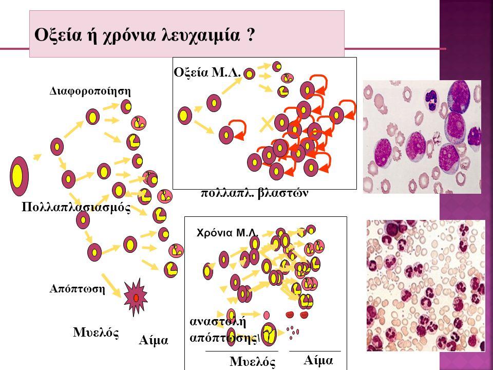 No Μοριακή θεραπεία της ΧΜΛ Αναστολέας της τυροσινικής κινάσης (STI571-Imatinib-Glivec) πυρήνας Διαβιβ.