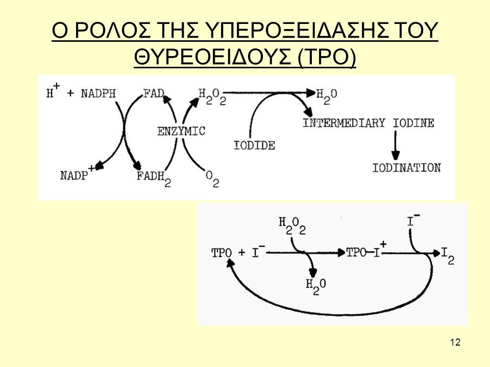 12 Ο ΡΟΛΟΣ ΤΗΣ ΥΠΕΡΟΞΕΙΔΑΣΗΣ ΤΟΥ ΘΥΡΕΟΕΙΔΟΥΣ (TPO)